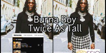 Burna Boy Twice As Tall Album
